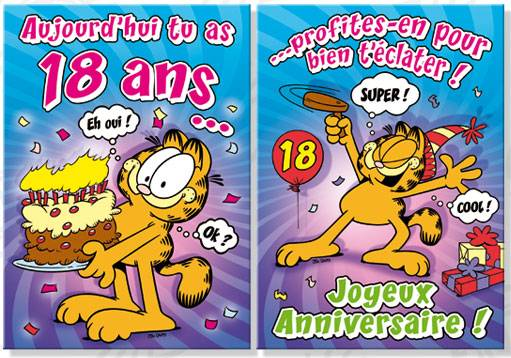 Carte Anniversaire Garfield 18 Ans Dimensions 19 X 26 5cm